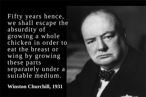 Winston Churchill Quote (1)